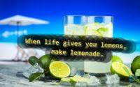 When life gives you lemons, make lemonade!